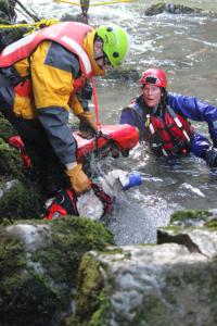 Nooksack River Dog Rescue