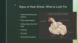 Heat & Poultry